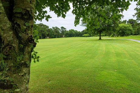 Course Info - Pine Valley Country Club